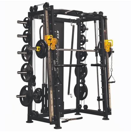 Smithmaskin/Functional Trainer kombi, X15